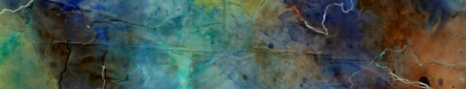 dans la foret des papillons bleus